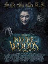 Into the Woods (2014) Watch Full Movie Online DVD Free Download