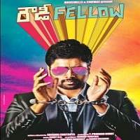 Rowdy Fellow (2014) Hindi Dubbed Full Movie Watch Online HD Download