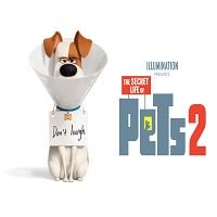 The Secret Life of Pets 2 (2019) Full Movie Watch Online HD Print Free Download