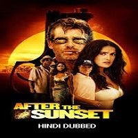 After the Sunset (2004) Hindi Dubbed Full Movie Watch Online HD Free Download