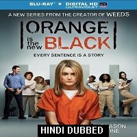 Orange Is the New Black (2013) Hindi Dubbed Season 1 Watch Online HD Free Download