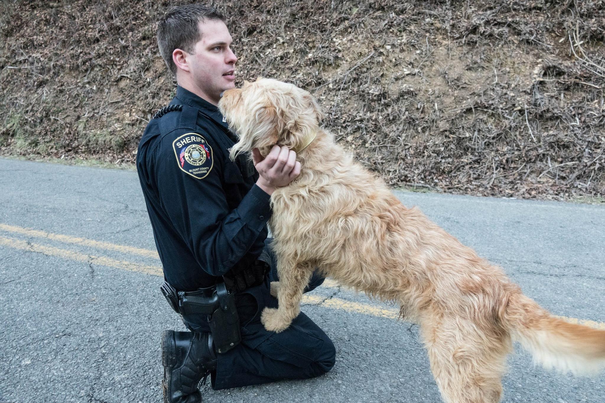 deputy dog 1_1517751852051.jpg.jpg