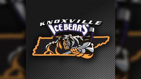icebears_1530892071896.jpg
