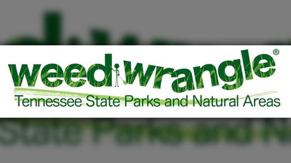 WEED WRANGLE 2019_TN State Parks_ASOW_0206_1549481700924.jpg.jpg