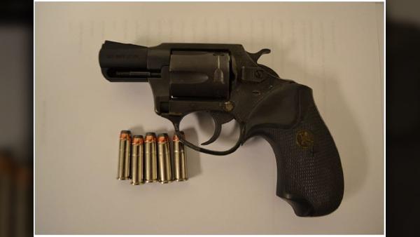 TYS-firearm-04012019_1554143388140.jpg