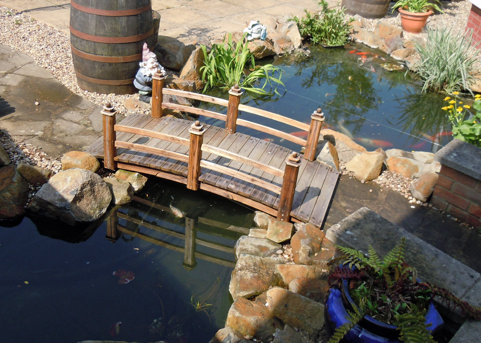 Garden Fish Ponds Designs