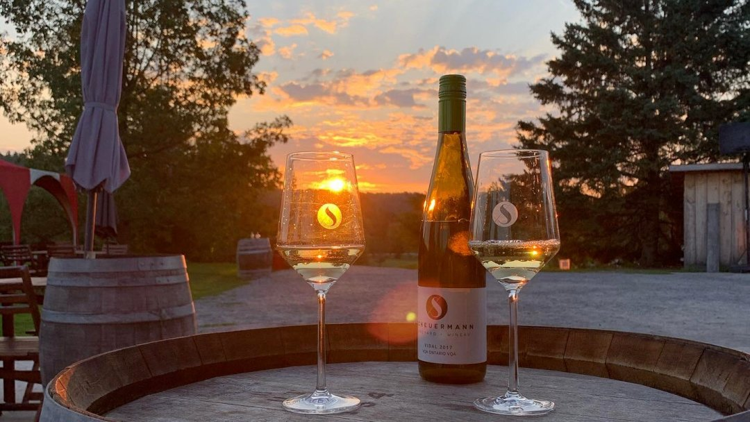 Two glasses of wine at the Scheuermann Winery in Westport, Ontario.