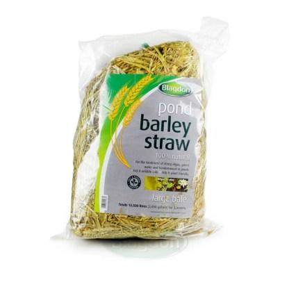 Barley Straw Large Bale