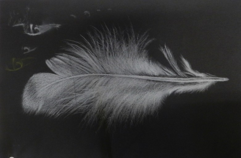 White on Black, Feather Drawing, Art