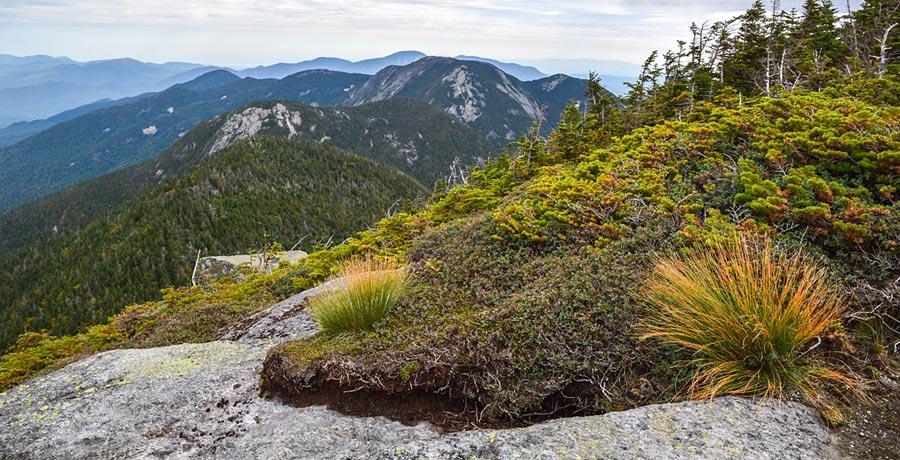 New England alpine region