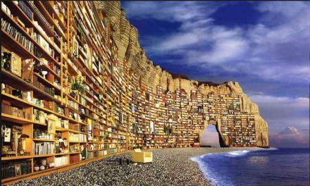 Apriamo una biblioteca a Lampedusa. Donate libri: appello ai parmigiani