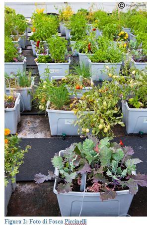 Montreal roof garden 2
