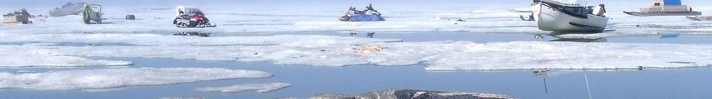 24 millesecondi.  Fibra ottica nell'Artico per colmare l'internet gap polare