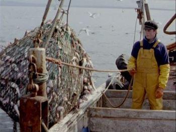pesca con rete