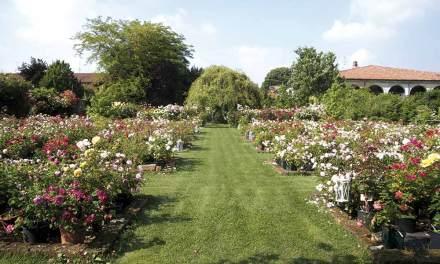 Giardinaria. Festival del giardino a Castello Quistini(BS) il 23 e 24 maggio