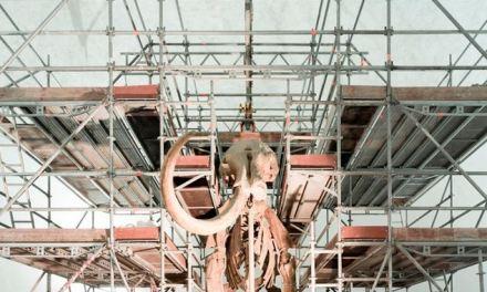 """""""For the use of hyperimages"""" una mostra anche sulla ricostruzione de L'Aquila"""