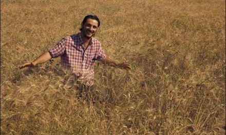 La (ri)scoperta dei grani antichi e la rinascita dell'agricoltura siciliana