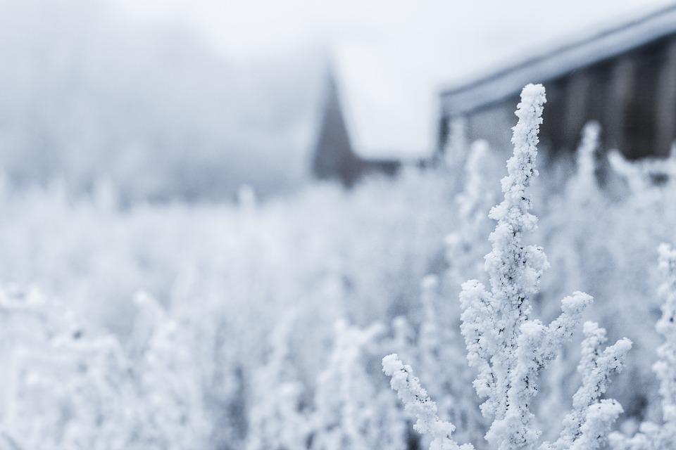 Snow farming: come ti riciclo la neve