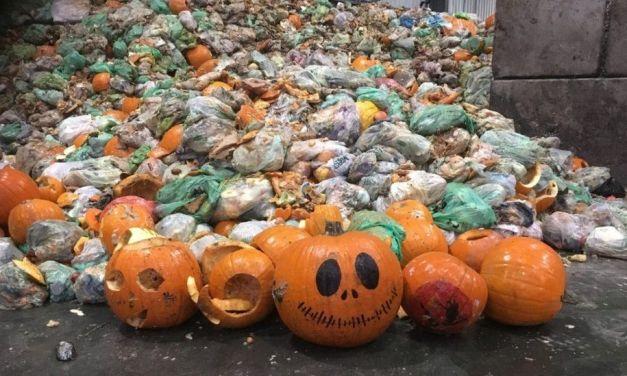 HALLOWEEN: uno scherzetto dannoso per il nostro pianeta?