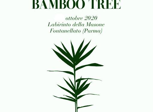 Un mondo di bambù al Labirinto della Masone: Intervista con Elisa Rizzardi