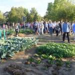 """Orti cittadini e """"panchine parlanti"""": progetti green a Reggio Emilia"""