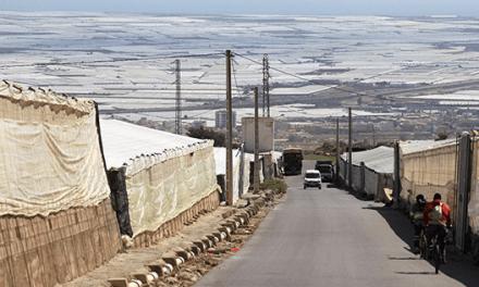 Almeria. Serra sterminata e schiavi agricoli