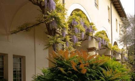 Interno Verde Festival. Giardini segreti di Parma