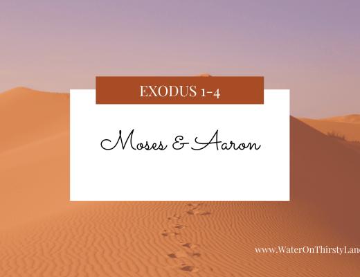Exodus 1-4: Moses & Aaron