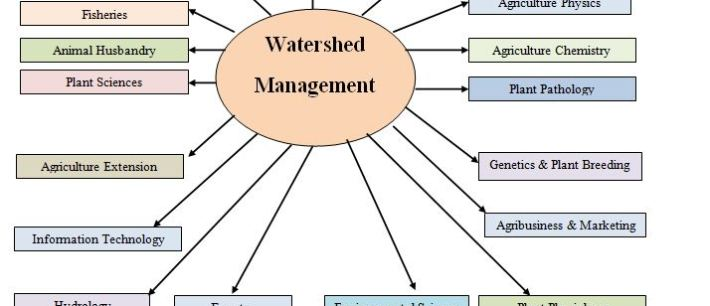 What is watershed??