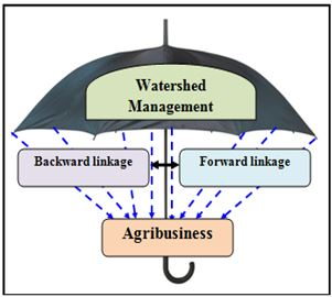 Watershed Management as an Umbrella Activity
