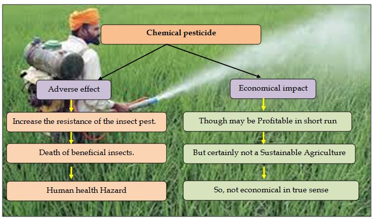 Chemicals in Agriculture