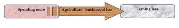 Agriculture –business of loss