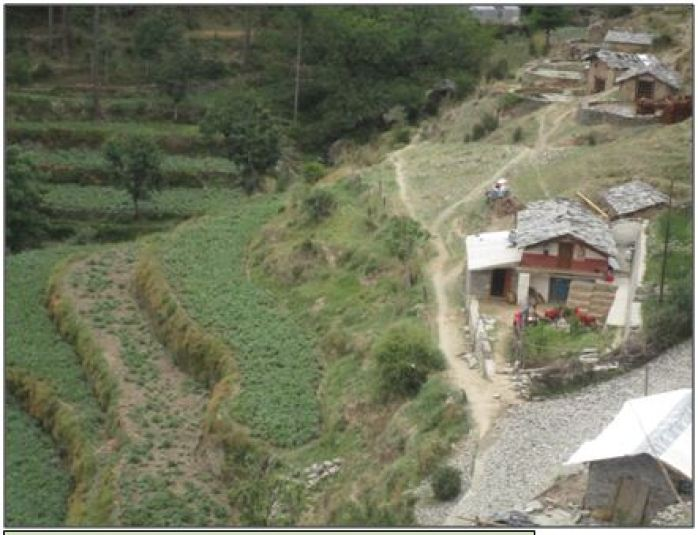 A farmer having organic potato cultivation in a village watershed in Hills
