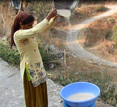 Winnowing done by woman in hills