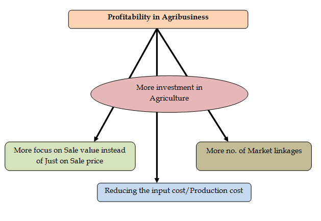 Agribusiness – A potential tool for doubling farmer's income