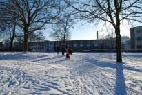 winter-in-het-park-013