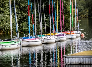All in a Row  by Sylvanus Fletcher