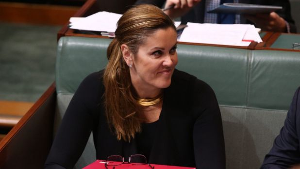 Newspaper reports claimed Mr Abbott's former chief of staff Peta Credlin was urging him to stand in the hope of one day becoming prime minister again.