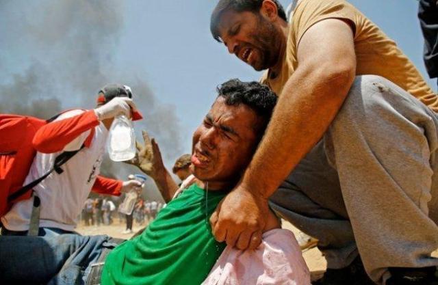 """ارتفاع عدد شهداء """"مجزرة غزة"""" الى 61"""