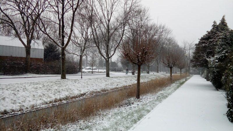Sneeuw maakte het bezorgen niet makkelijker