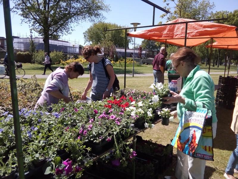 Plantjesdag voor de laagbouw tuinhoven