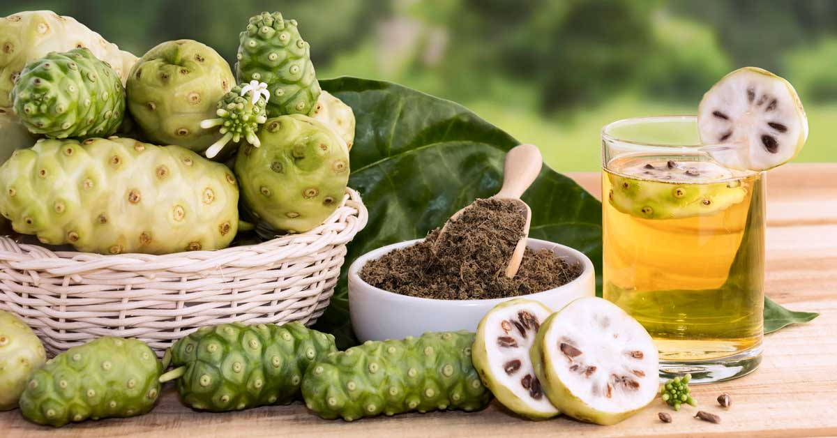 Noni Fruit – One of The World's Most Powerful Superfoods