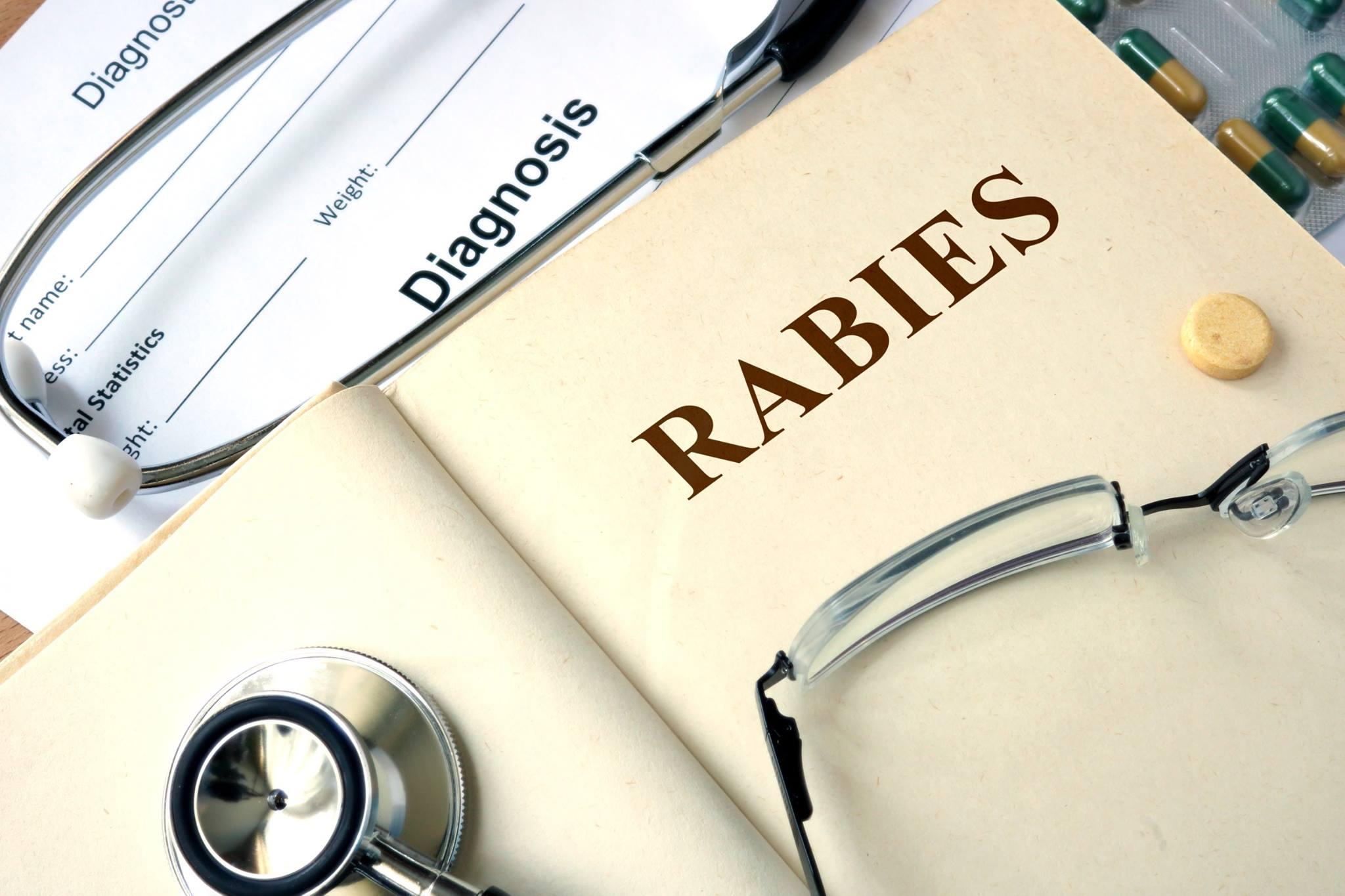 rabies_191877