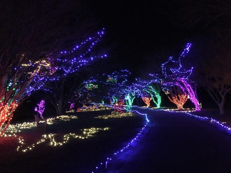 norfolk botanical garden lights_1542148418821.jpg.jpg