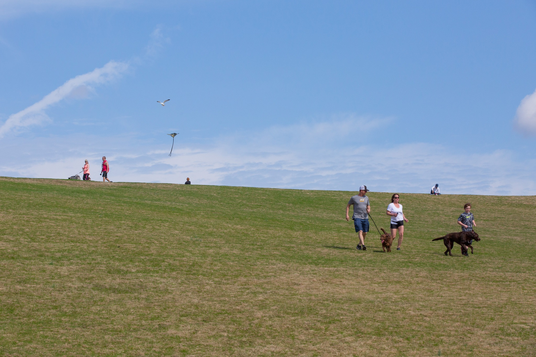 Mount Trashmore Park VB Parks and Rec_1524164263453.jpg.jpg