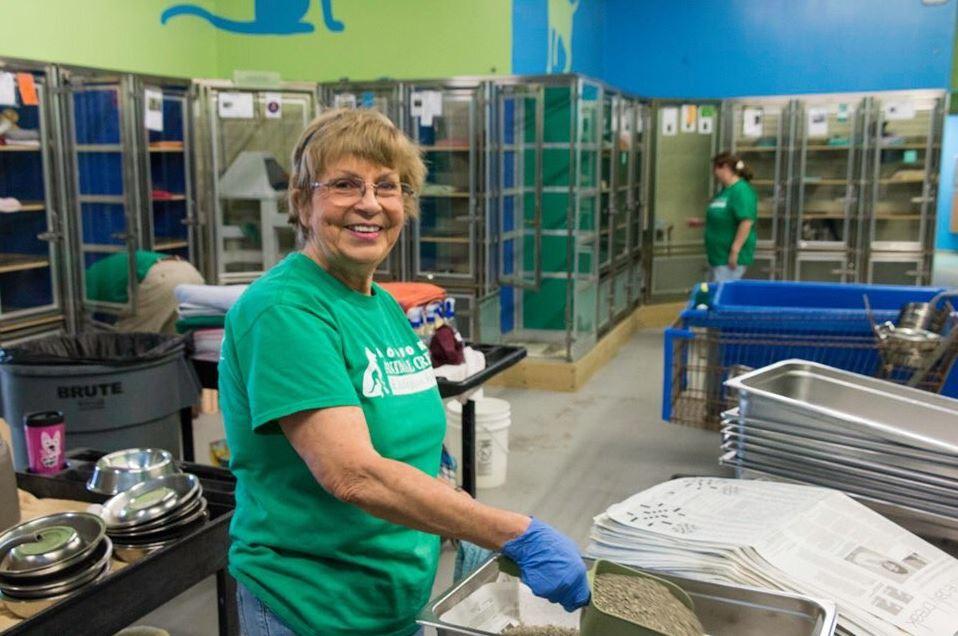 Norfolk Animal Care Center Spring Cleaning_1558019958592.JPG.jpg