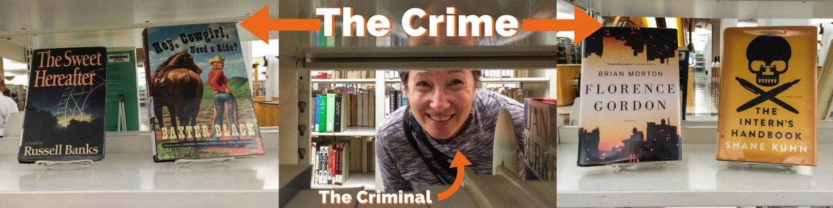 Literary Crimes in Chicago
