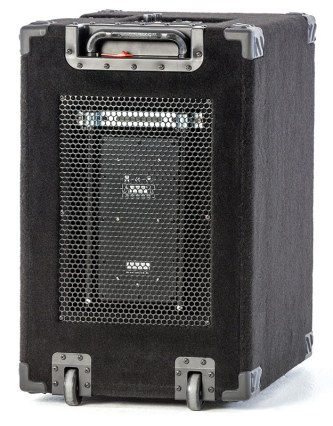 Wayne Jones Audio - 1000 Watt 2x10 Powered Bass Cabinet
