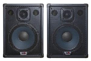 Wayne Jones Audio - 1000 Watt 1x10 Powerred Stereo/Mono Guitar Amp / Cabinets