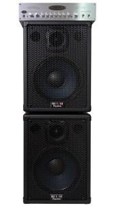 WJ 1×10 bass guitar passive cabinets with  WJBA2 1000 Watt Bass Guitar Amplifier